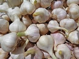 Bawang putih untuk mengobati kerontokan rambut