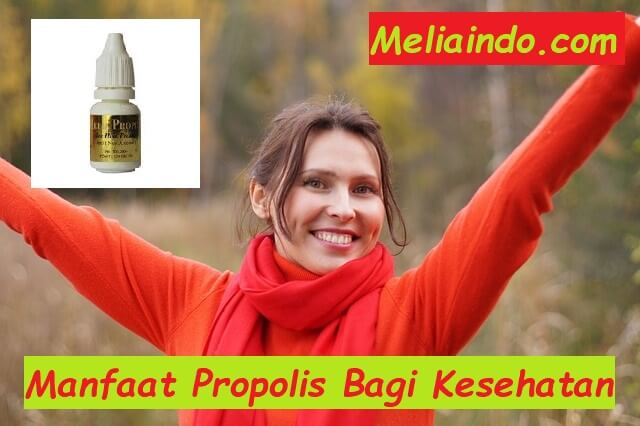 Manfaat Propolis Bagi Kesehatan